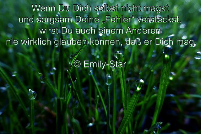 """Wenn Du Dich selbst nicht magst und sorgsam Deine """"Fehler"""" versteckst, wirst Du auch einem Anderen nie wirklich glauben können, daß er Dich mag. © Emily-Star"""