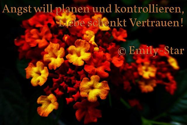 Angst will planen und kontrollieren, Liebe schenkt Vertrauen! © Emily-Star